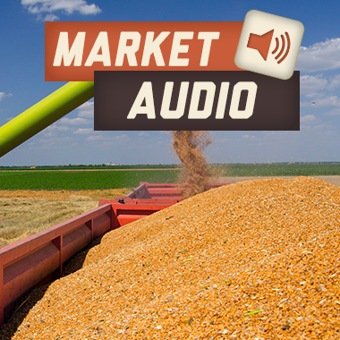 Market Audio